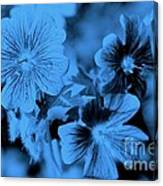 Blue Tears Canvas Print