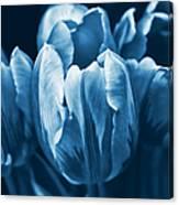 Blue Tulip Flowers Canvas Print