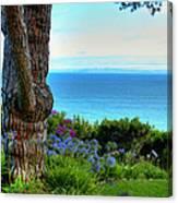 Blue Waters In Palos Verdes California Canvas Print
