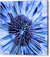 Blue Wish Canvas Print