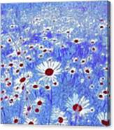 Blue With White Daisies Canvas Print