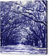 Blue World In Savannah Canvas Print