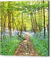 Bluebell Wood Watercolour Canvas Print