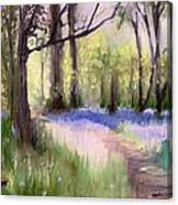 Bluebells At Dusk Canvas Print
