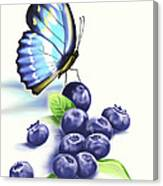 Blueberries And Butterfly Canvas Print