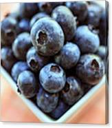 Blueberries Closeup Canvas Print