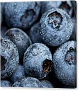 Blueberries Fruits Canvas Print