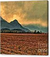 Blueberry Fields Canvas Print
