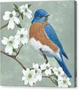 Bluebird And Dogwood Canvas Print