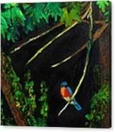 Bluebird Shimmer Canvas Print