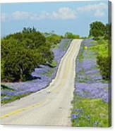 Bluebonnet Highway 2am-28667 Canvas Print
