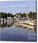 Bluer Than Blue    Painted Canvas Print