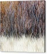 Blurred Brown Winter Woodland Background Canvas Print