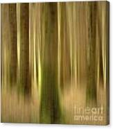 Blurred Trunks In A Forest Canvas Print