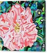 Blushing Camellia Canvas Print