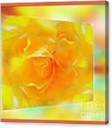 Blushing Yellow Rose Framed Canvas Print