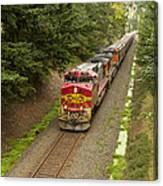 Bnsf Train 789 D Canvas Print