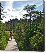 Boardwalk In Salmonier Nature Park-nl Canvas Print
