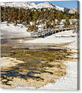 Boardwalk In The Park Canvas Print
