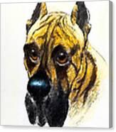 Boarhound Portrait Canvas Print