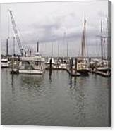 Boats At St. Augustine Harbor  Canvas Print