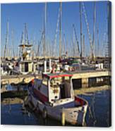Boats Of Badalona Marina Canvas Print