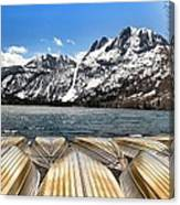 Boats On The Shore Canvas Print