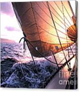 Boats Wing  Canvas Print