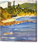 Boatsheds At Sandon Point Canvas Print