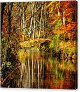 Bob's Creek Canvas Print