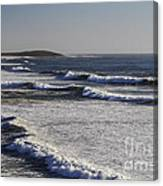 Bodega Bay Beach Canvas Print