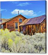 Bodie House And Sage Canvas Print