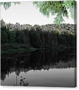 Bog River Canvas Print