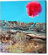 Bogomil Sunrise 2 Canvas Print
