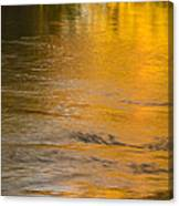 Boise River Autumn Abstract Canvas Print