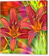 Bold And Beautiful Daylilies Canvas Print