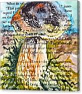Boletus Edulis Close Up Canvas Print