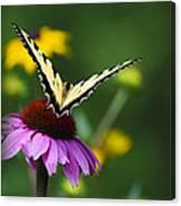 Bon Voyage Butterfly Canvas Print
