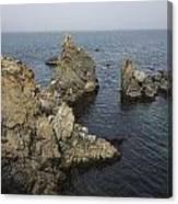 Bonavista Rocks Canvas Print