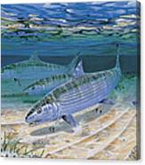Bonefish Flats In002 Canvas Print