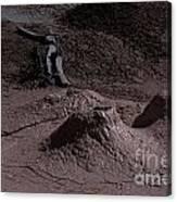 Bones At Mud Pot Area I I Canvas Print