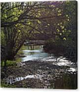 Bonne Femme Creek Canvas Print