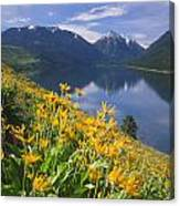 M-05921-bonneville Mountain Reflected In Wallow Lake Canvas Print