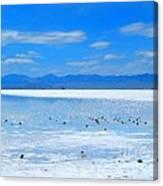 Bonneville Salt Flats After The Rain Canvas Print