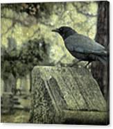 Book Of Wisdom Canvas Print