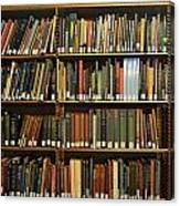 Bookshelves Canvas Print