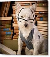 Bookworm Dog Canvas Print