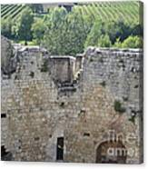 Bordeaux Castle Ruins With Vineyard Canvas Print