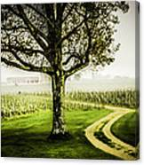 Bordeaux Vineyard Canvas Print