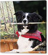 Border Collie At Painting Easel Canvas Print